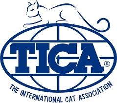 TICA registered cats